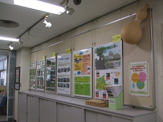 Fotografía del despliegue del tablero del Pupilo de Minami la oficina gubernamental