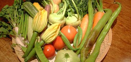 Photograph of Yokohama vegetables assortment