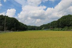 Scenery photograph of servant of a Buddhist temple hometown village