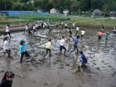 Image of mud phosphorus pick