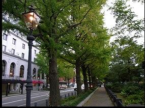 Photograph of Yamashita Park outskirts district