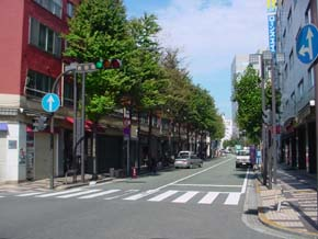 Photograph 1 of Yoshida-cho district