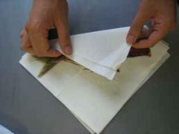 La fotografía 2 que qué da a la basura de la cocina con papel
