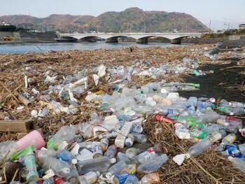 강가의 플라스틱 쓰레기의 사진