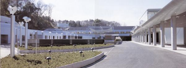 Fotografía de la apariencia del corredor fúnebre norteña