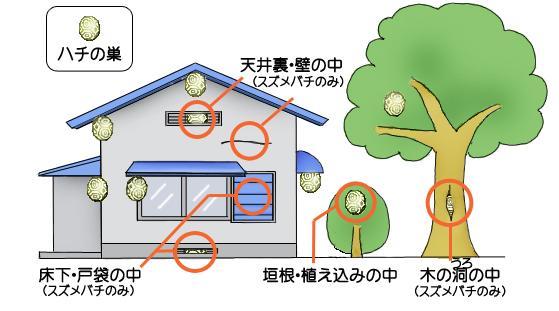 蜂窩容易被組成的地方的圖