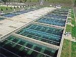 급속 여과 연못