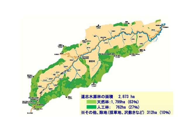 道路志水資源林的現狀