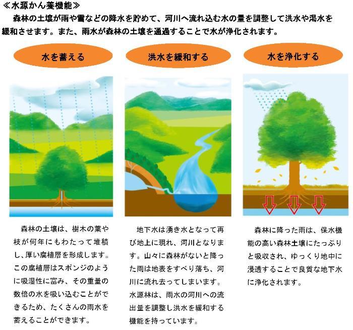 水源林的工作