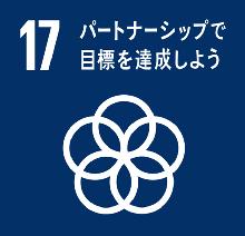SDGs Target 17