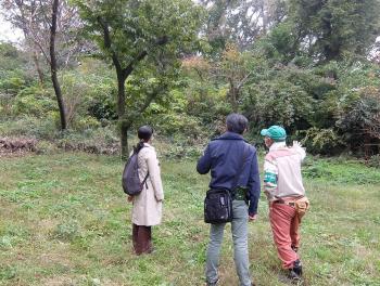 상인방 하라이치 민의 숲 애호회의 스가와라 회장의 안내의 아래 숲을 산책