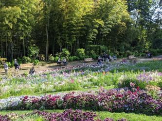 里山ガーデン写真1