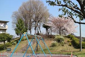 櫻花的時期的年糕冢