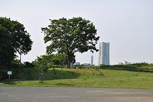 Karasawa Park