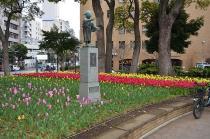 Photograph 3 of tulip of Yokohama Park  of March 31, 2020