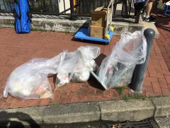 Photograph of garbage which we collected