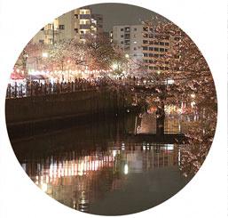 大岡川燈籠點燈