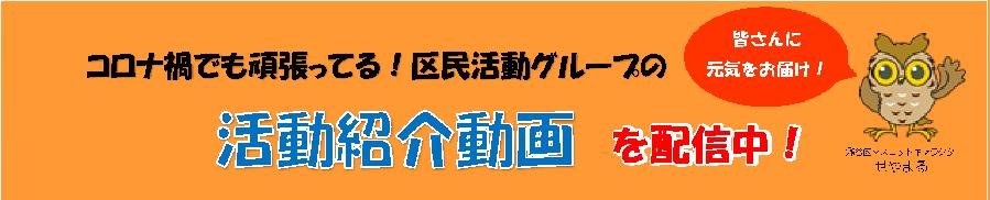 Activity video top banner