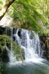 Poleax de Udagawa es la cascada del agua profunda