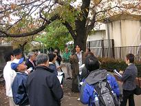 Lecture and medical record making of cherry blossoms