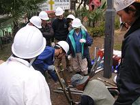 Implantation of bamboo tube