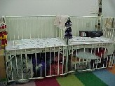 Kids land bed