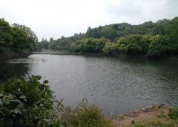 Fotografía del prefectural el parque de Mitsuike