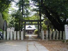 Imagen del Sueyoshi la urna sintoísta