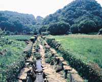 Camino Shishigaya Shimin-Ningún-Mori y estrecho del murmullo
