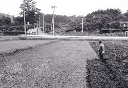 Image of the neighborhood of Mitsuike Park north gate (1972)