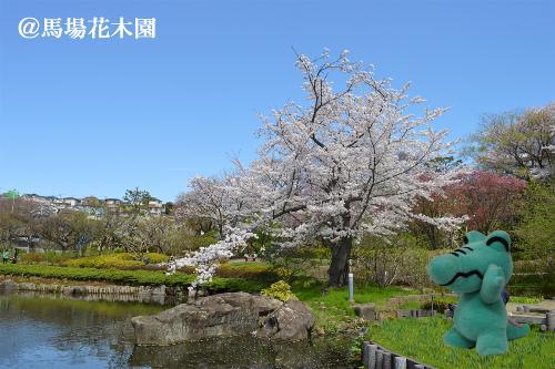 Primavera de papel de pared de wakkun