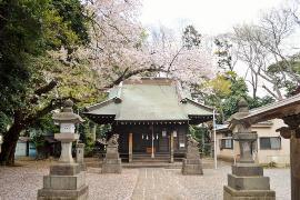 Urna de Shirohata