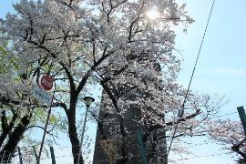 Imagen de la torre de agua del Tsurumi que distribuye el depósito