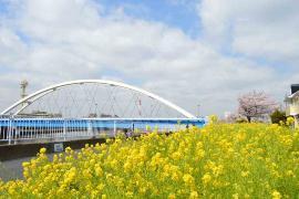 El puente de Tsurumi Río