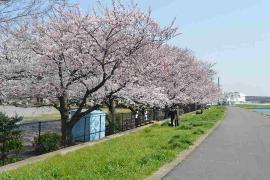 La imagen del 1, parque de Yakou