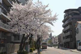 Imagen del Tsurumi Este Salida estación camino