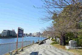 Imagen del parque de ciudad de borde de la agua de Tsurumi Río (el barrio de marea el Tsuruhashi derecho banco)