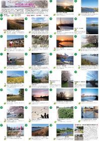 La cereza de Tsurumi Río florece pasea el mapa