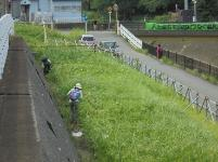 The Hayabuchi River clean up masterpiece war 2016
